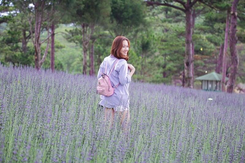 Vườn hoa lavender ở Thung lũng tình yêu